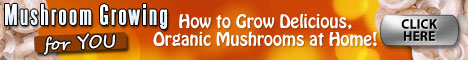 How Do You Grow Mushrooms